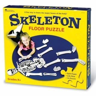Puzzle de podea - Schelet