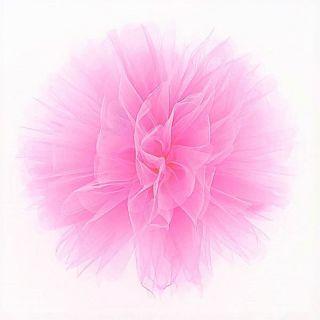 Decor sala din tulle roz pentru evenimente, Radar